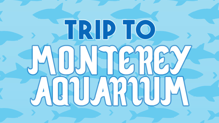 Trip to Monterey Bay Aquarium