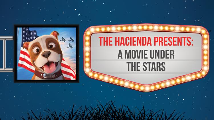 Dinner-N-Movie Under the Stars.